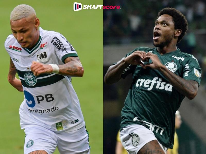 Jogadores do Coritiba e Palmeiras
