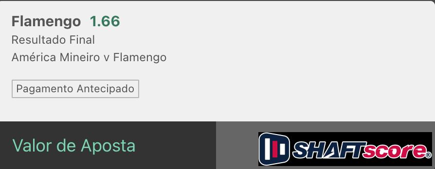 Bilhetes prontos palpite hoje America Mineiro Flamengo resultado final bet365.