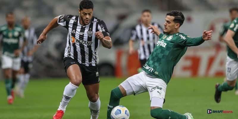 Palpite e prognóstico Palmeiras Atlético Mineiro, dicas de apostas esportivas online Bet365.