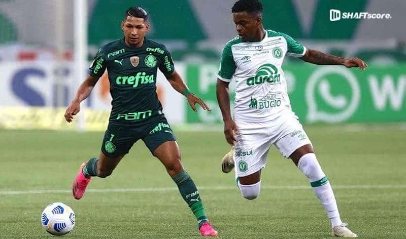 Palpite e prognóstico Chapecoense Palmeiras, dicas de apostas esportivas online.